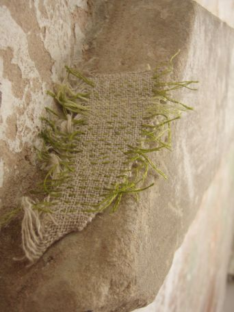 Regeneration, an installation by Ruth Singer. More details here