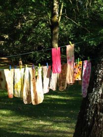 First batch of dyes (photo by R Lazenby)